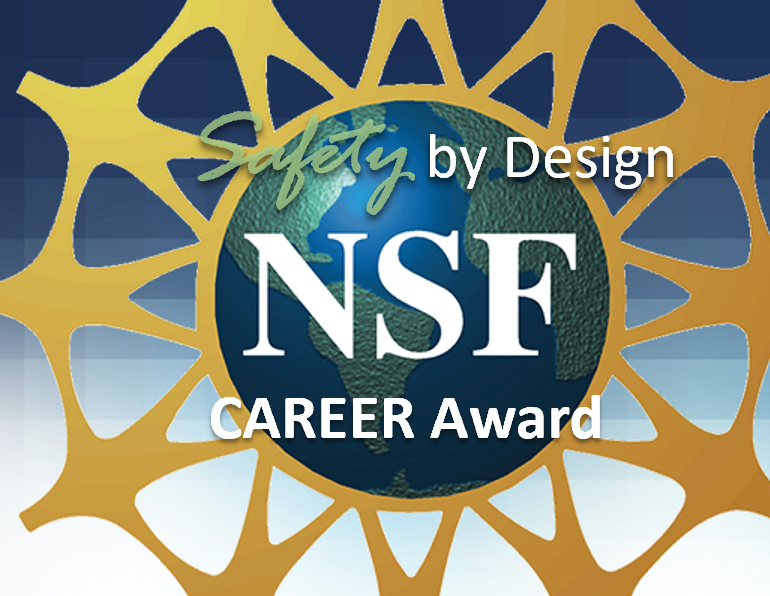 NSF CAREER Award