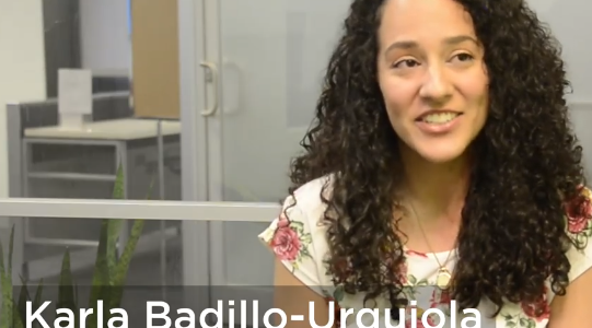 Badillo-Urquiola